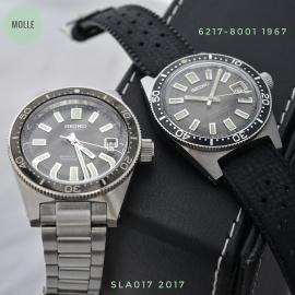 SLA017 & 6217-8001